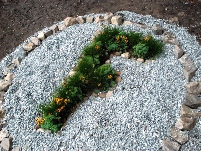 F planting 2-web